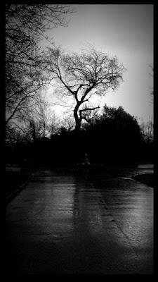 E intanto cadeva la pioggia... di IrisHate