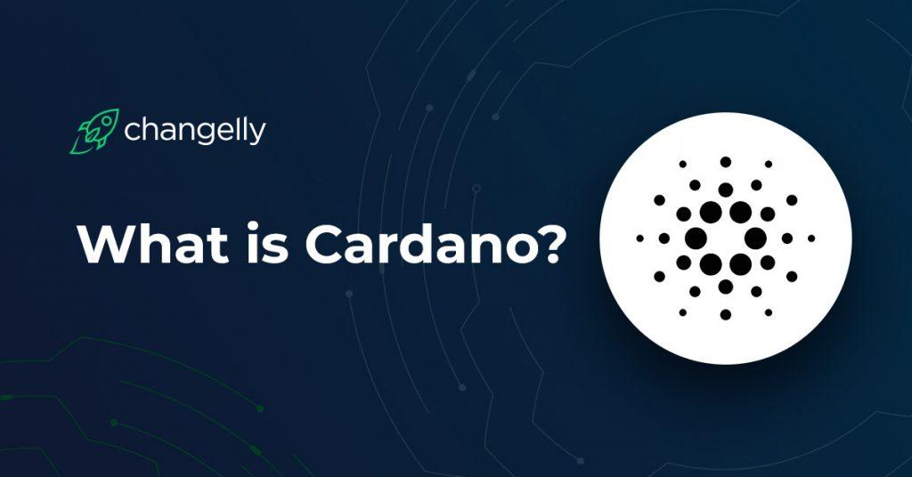 Что из себя представляет Cardano – история, особенности, экосистема