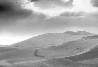 Photo: Clockwise Up - Camel Caravans near Dunhuang
