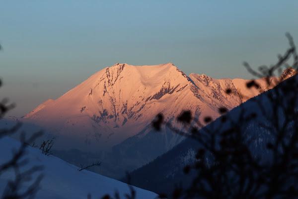 Le montagne sono sempre generose di champi