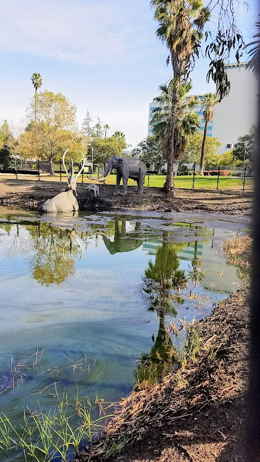 La Brea Tar Pits in Los Angeles- several pits are located outside the Museum and you can view them for free walking in the park. This is the largest, the Lake Pit, a still bubbling, asphalt seep with life-size fiberglass statues of mammoths and an American mastodon.