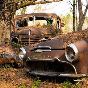 Dynamic Duo by Dan Bartlett - Transportation Automobiles ( car, truck, rust, forgotten, woods, desoto, abandoned,  )