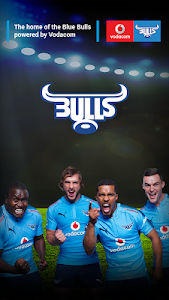 Blue Bulls screenshot 0