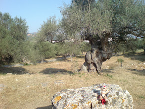 Photo: Sparta is not known for its monuments.