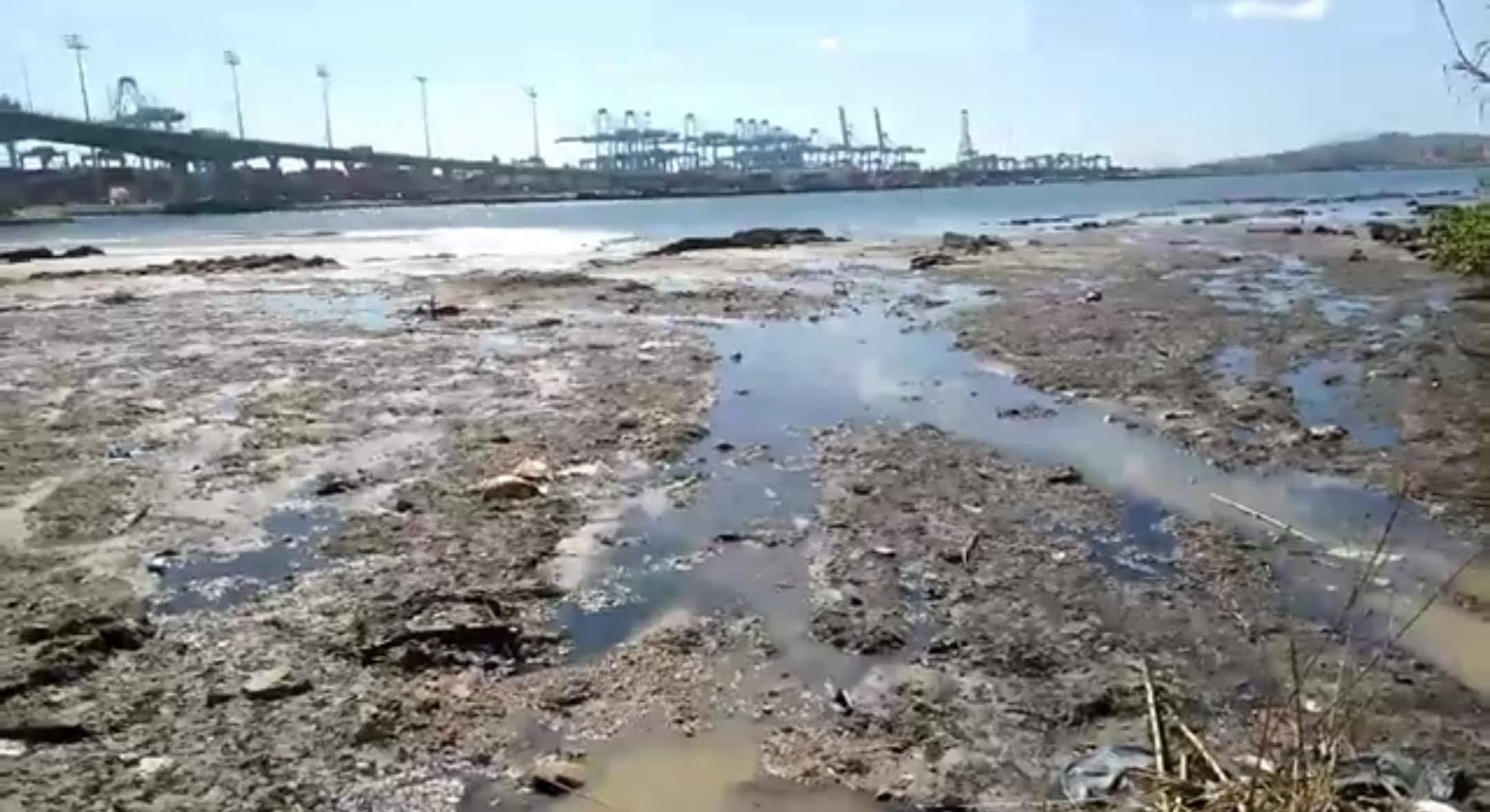 Adelante Algeciras pide al Ayuntamiento una intervención urgente ante las constantes vertidos de fecales en El Rinconcillo