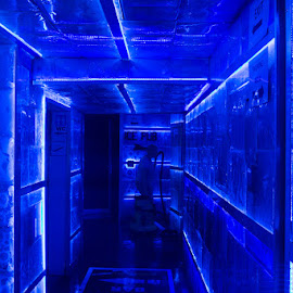 Ice Bar by VAM Photography - Buildings & Architecture Other Interior ( bar, places, blue, ice, prague, travel, people )