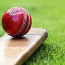 Cricket Wallpapers Theme New Tab