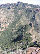 Photo: Looking back down at the spine we've been climbing and the Lost Mine trail in the distance.