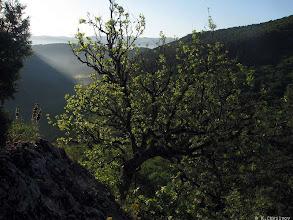 Photo: Первое утро на территории древней крепости над серединой Чернореченского каньонона.