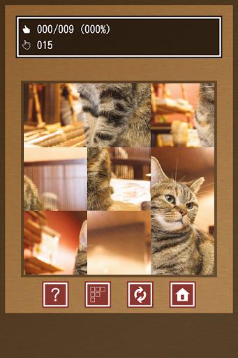 Swapping Cat Puzzle 1.4 Windows u7528 2