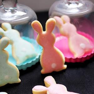 Blue & Pink Bunnies