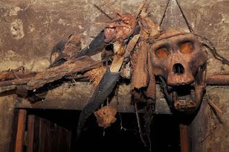 Photo: gorilla skull and bongo horns above the door of my hut