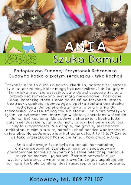 Firmówka Ania