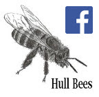 Hull Bees FaceBook Page