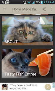Healthy homemade cat food recipes apps on google play screenshot image forumfinder Gallery