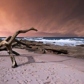 by David Botha - Landscapes Beaches