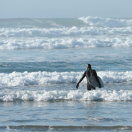 Surf's Up by Tanya Greene - Sports & Fitness Surfing ( tofino, canada, waves, pacific ocean, sea, pacific, cold water, ocean, west coast, wet suit, coast, surfing, surfer, surf board, wave, sunshine, pacific northwest, surf, big waves )