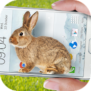 App Bunny in Phone Cute joke APK for Windows Phone