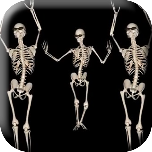 Belly Dancing Live Skeleton