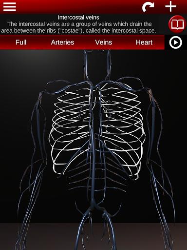 Circulatory System in 3D (Anatomy) 1.58 screenshots 21