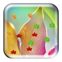 E7 MagicTouch Leaves Wallpaper icon