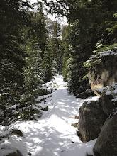 Photo: Fresh snow on Loch Vale Trail!