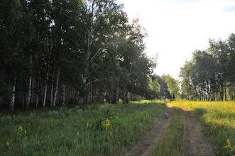 Photo: Вокруг Орловки  - Paysage typique des environs d'Orlovka