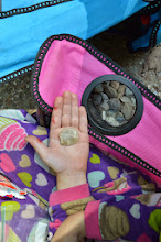 Photo: Collecting stones at Emerald Lake State Park by Linda Carlsen-Sperry