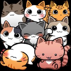 web Cat Life