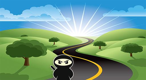Ninja Crossy road