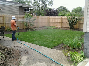 Photo: Sod, fence and more