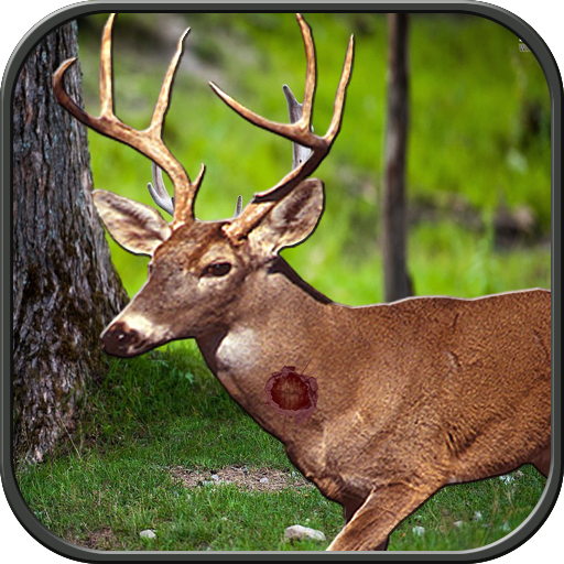 Jungle Animal Hunter (game)