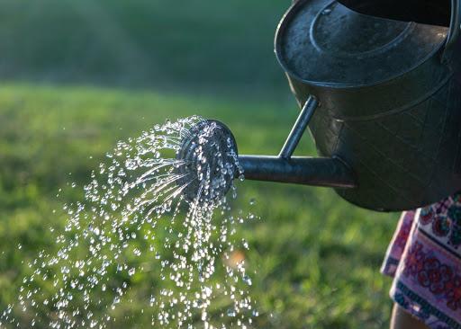 Garden Water Management