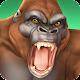 CCG Deck Adventures Wild Arena: Collect Battle PvP (game)