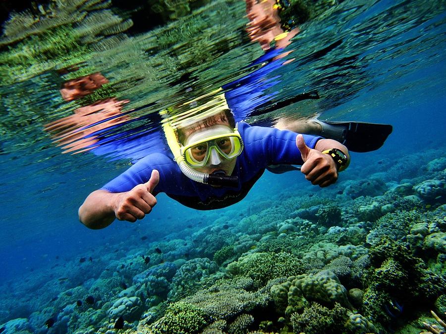 Bunaken Sea Garden by Iwan DiJe - Sports & Fitness Swimming