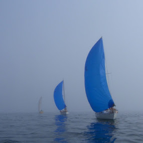Blue sails in the fog by Richard Beckmann - Transportation Boats