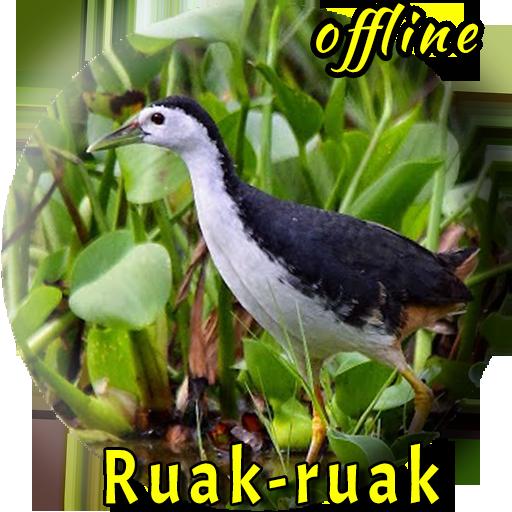 Wak Wak Pikat Mp3 Offline 1 0 3 Apk Download Com Miracle Master Kicau Terbaik Terbaru Suara Burung Ruak Ruak Pikat Gacor Ngerol Apk Free
