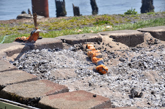 Photo: Oops - salmon fell over into coals