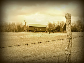 Photo: Sepia old-fashioned photo of a dark mule in front of a barn at Carriage Hill Metropark in Dayton, Ohio.