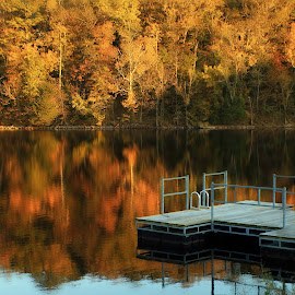 AUTUMN REFLECTIONS by Dana Johnson - Buildings & Architecture Other Exteriors ( waterscape, reflections, autumn, lake, trees, landscape )