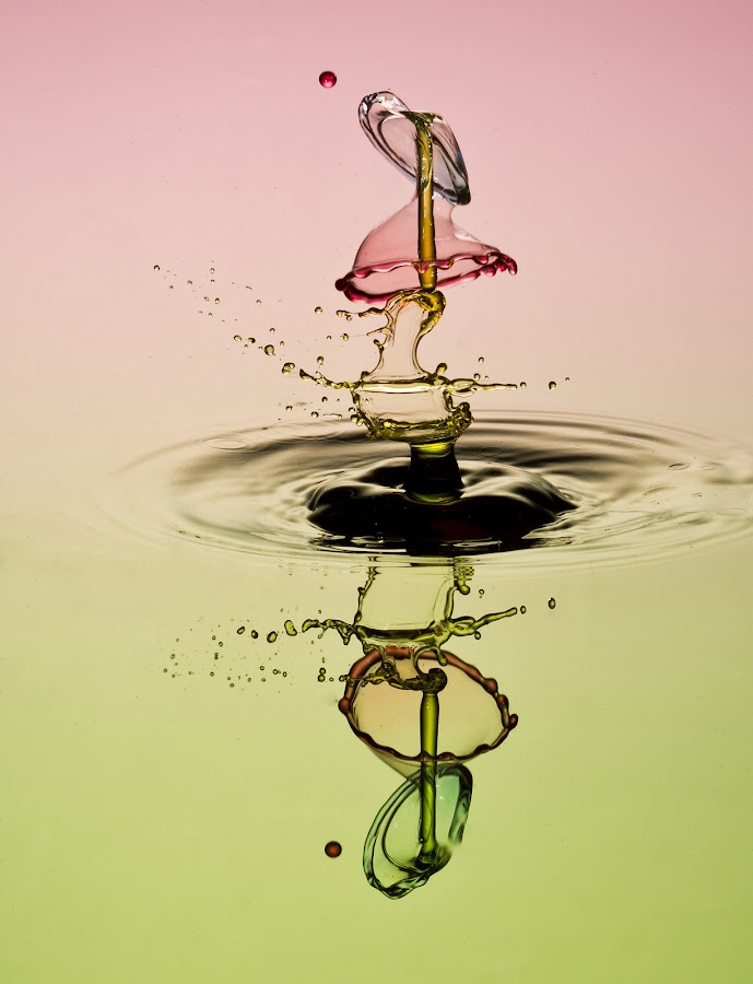 IMPACT DROPS by Francois Loubser - Abstract Water Drops & Splashes ( water, reflection, splash, waterdrop, drop, rippled, abtract, circle, shape, bounce, drip, bubble, macro, liquid, splashing, fluid, droplet, fall, movement, ripple, collide, wet, motion, collision )
