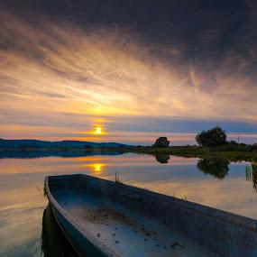 rowing boat on Rudmanns Pond by Franz  Adolf - Transportation Boats ( sunset, rowing boat, lake, boat, pond )