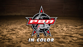 PBR: In Color thumbnail