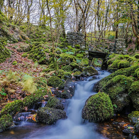 Cregennan Lake by Nigel Bishton - Landscapes Waterscapes
