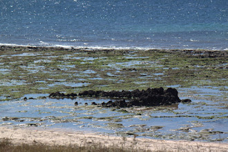 Photo: A fish trap, built to trap fish when the tide goes out