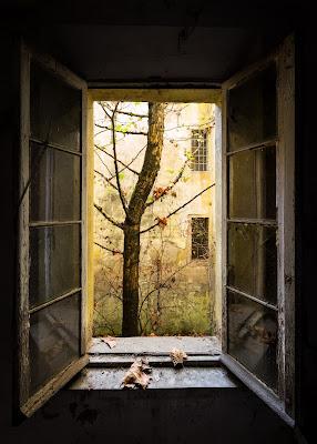 Autumn in Asylum  di Marco Tagliarino