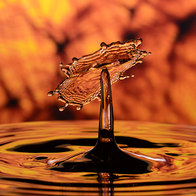 Water Droplet by Micah Jaron Flack - Abstract Water Drops & Splashes ( water droplet )