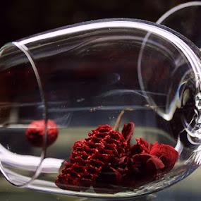 Fragile by Jadranka Bužimkić - Artistic Objects Glass