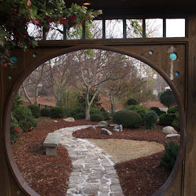 Through the gate by Lynn Morley - City,  Street & Park  Street Scenes ( soft sunrise, camellia, yard, oriental, bench, japanese, stones, flowers, garden, walk, pwcpaths, gate )