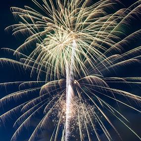 Dispersion by Madhujith Venkatakrishna - Abstract Fire & Fireworks